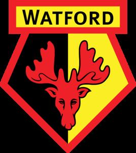 沃特福德足球俱乐部队徽