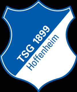 霍芬海姆队徽