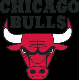 芝加哥公牛队队徽