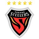 浦项制铁足球俱乐部队徽