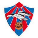 瓦路尔足球俱乐部队徽