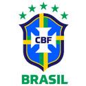 巴西女足足球俱乐部队徽