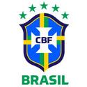 巴西(U21)足球俱乐部队徽