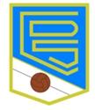 萨利涅纳足球俱乐部