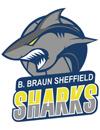 谢菲尔德鲨鱼篮球俱乐部
