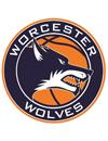 伍斯特狼队篮球俱乐部