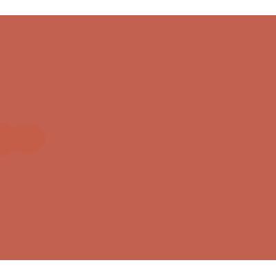 Team zero 队徽